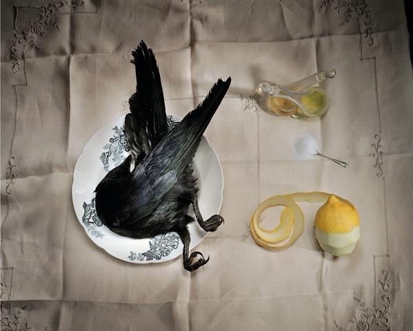 """""""Crow with Salt"""" by Marian Drew"""