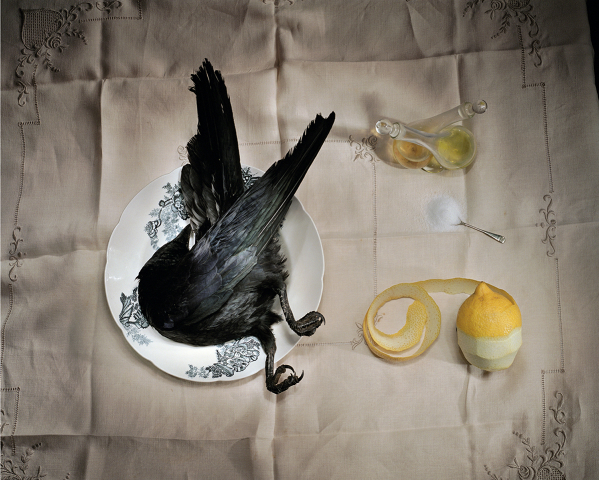 """Crow with Salt"" by Marian Drew"