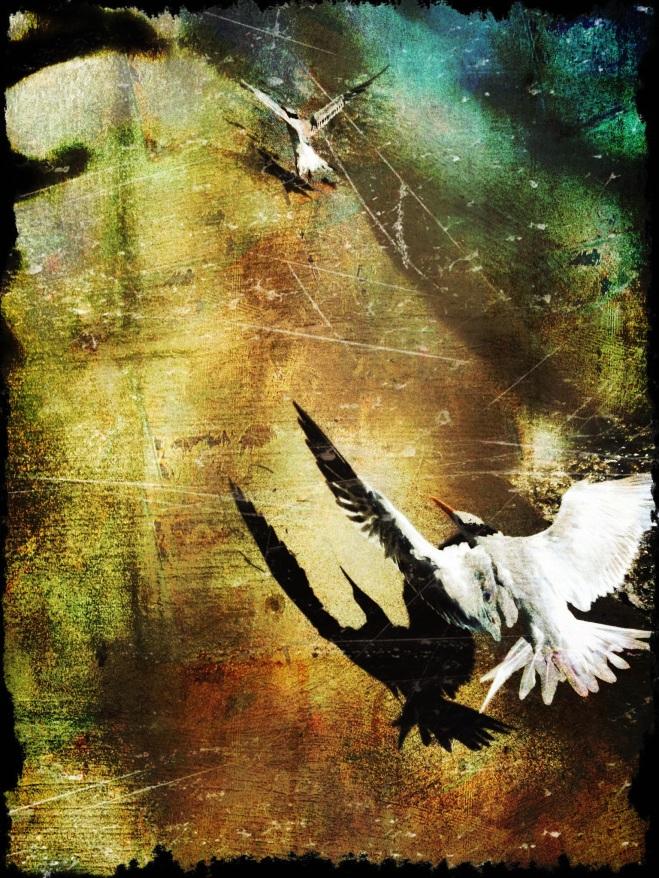 """""""Time to Go"""" by Jaime Ferreyros"""