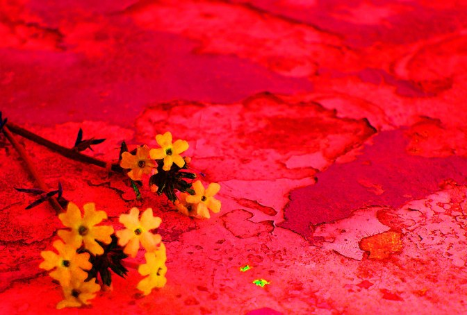 """""""Yellow on Red"""" by Christopher Woods"""