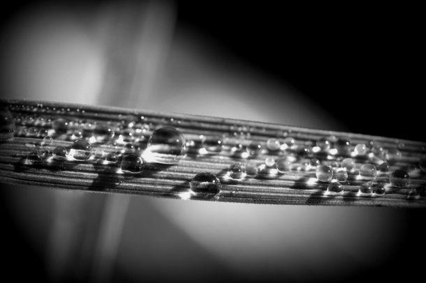 """Drop it like its Dew"" by Danno Van Groll"