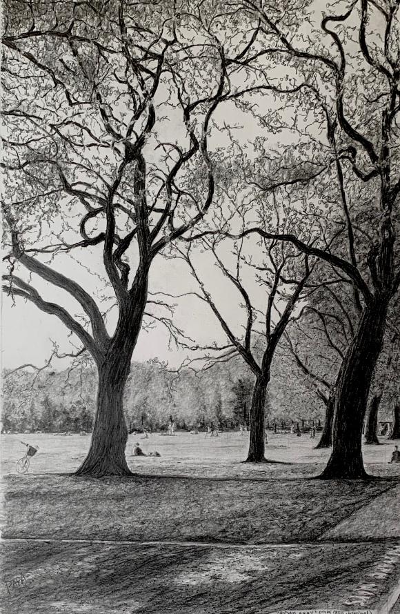 Hyde Park by Nicholas C Casciano